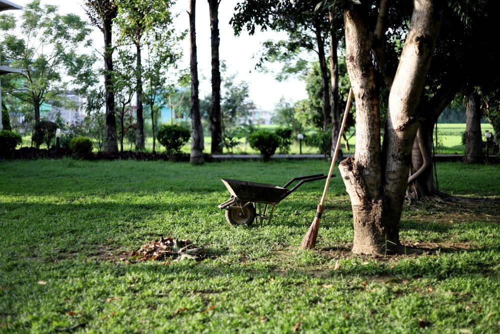 prace-ogrodnicze